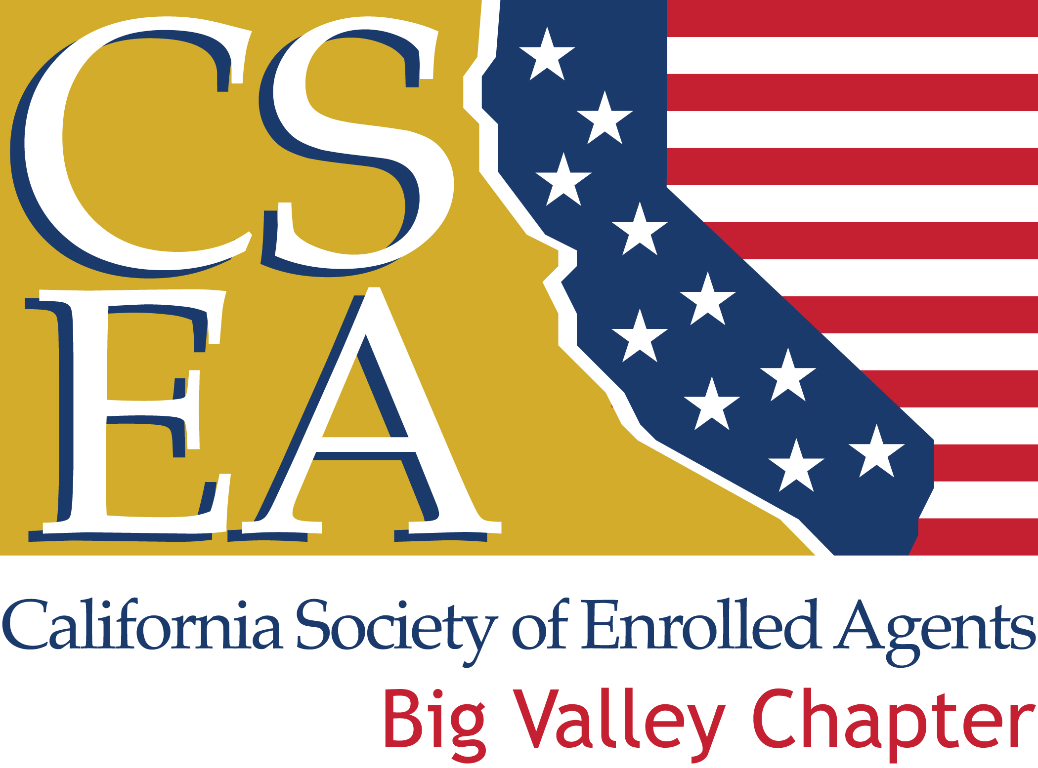 Enrolled Agent Exam Preparation - Big Valley